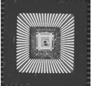 半導体チップの画像検査